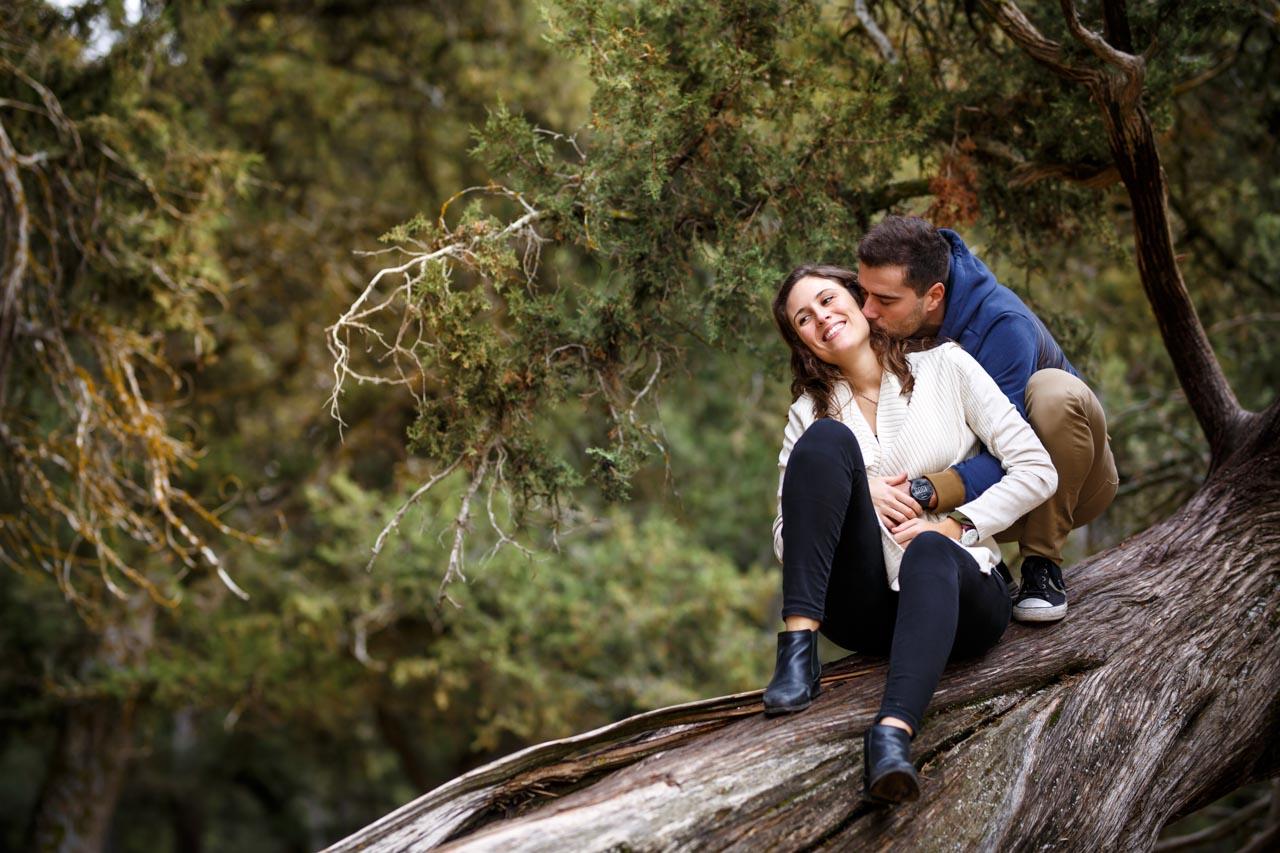 los novios subidos en un árbol caído en el sabinar en una preboda en Soria