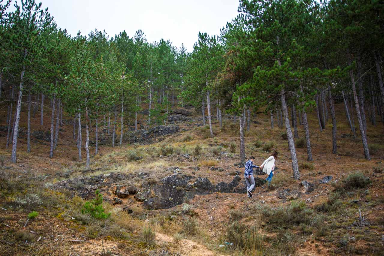 Los novios se adentran en un bosque de pinos en una preboda en Soria
