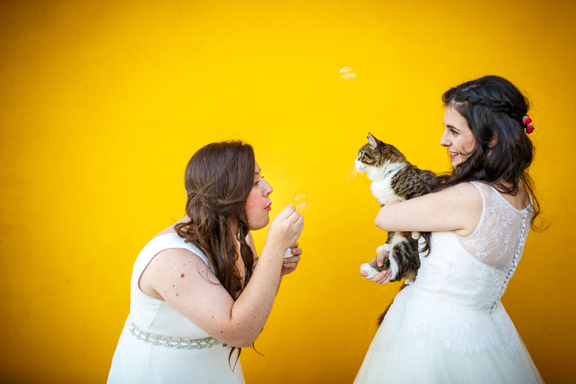 dos chicas jugando con su gato con pompas de jabon