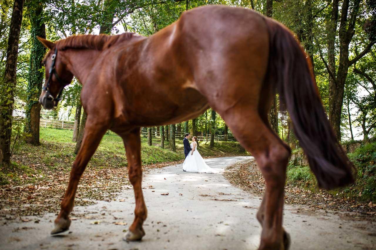 novios en la carretera tras el caballo caminando en la hípica de jaizubia