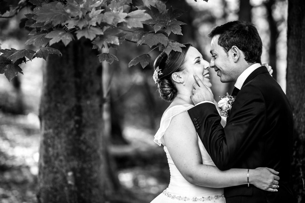 novios debajo de un arbol besandose
